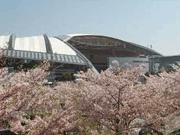 阪神競馬場花見